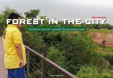 """ไปถ่ายรูปกัน : """"ศูนย์เรียนรู้ป่าในกรุง"""" ทางเดินลอยฟ้า แห่งกรุงเทพมหานคร"""
