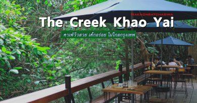 """[รีวิว]  """"The Creek Khao Yai"""" คาเฟ่ริมลำธาร หน้าติดเมือง หลังติดป่า"""